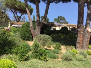 agence-immobiliere-grimaud-3-Copie-300x225 agence-immobiliere-grimaud-3 - Copie immobilier Saint Tropez Grimaud Ramatuelle Gassin