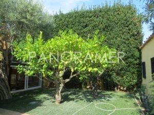 IMG_0391-Copier-300x225 IMG_0391 (Copier) immobilier Saint Tropez Grimaud Ramatuelle Gassin