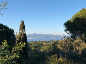 IMG_2558-300x225 IMG_2558 immobilier Saint Tropez Grimaud Ramatuelle Gassin